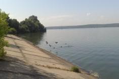 Рыбодром №2