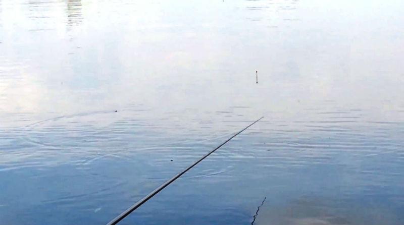 прикормка для поплавка с лодки