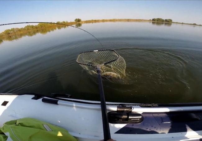 Как ловить судака на спиннинг летом + Видео