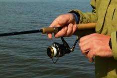 Снасти для ловли судака летом